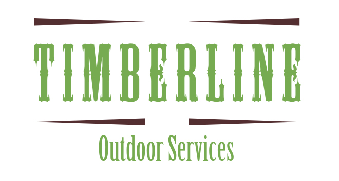 chattanooga webdesign timberline2