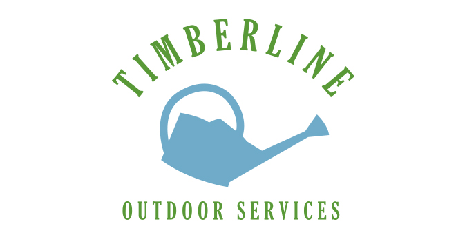 chattanooga webdesign timberline3