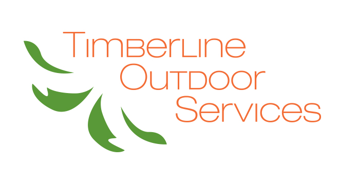 chattanooga webdesign timberline4
